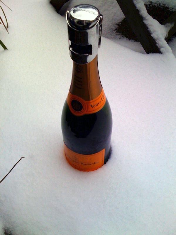 Witwe im Schnee