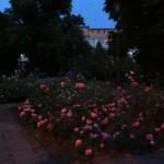 Sommerabend, der Moment, wo Berlin sehr nett ist.