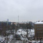 Sonntagsmäander im Schnee
